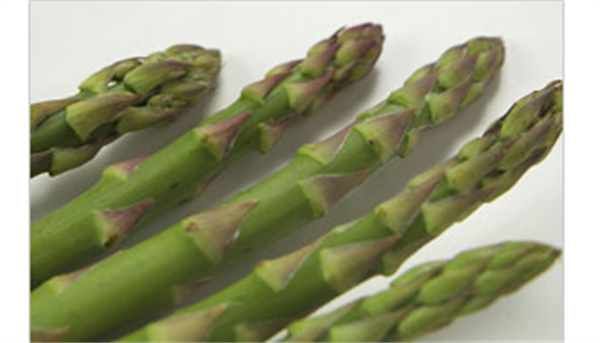preservationmethodasparagus 美肌効果や疲労回復にも!今が旬の「アスパラ」レシピまとめ