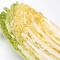 白菜の選び方から保存方法、使い方
